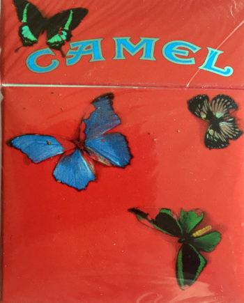 damien_hirst_camel